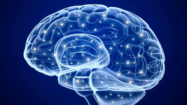 El ejercicio y el cerebro: más razones para mantenerse en movimiento